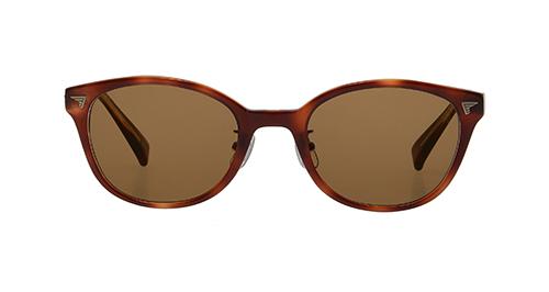ブラウン75F(濃い茶色)